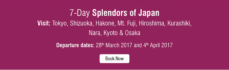 7 Days Splendors of Japan