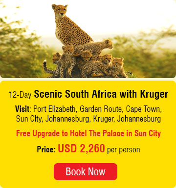 12 Days Scenic South Africa with Kruger