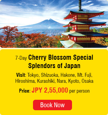 7 Days Cherry Blossom Special Splendors of Japan